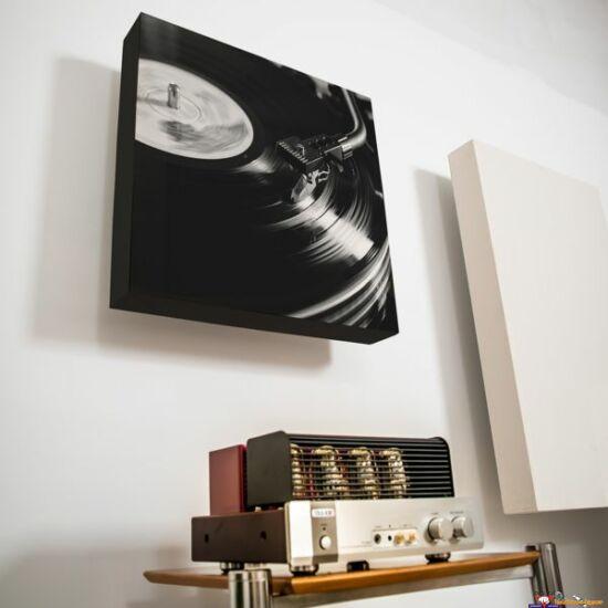 RW Professional akusztikai panel 64 x 104 cm